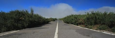 IMG_0516_road_pano_MINI
