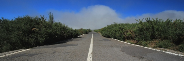 IMG_0516_road_pano_MINI