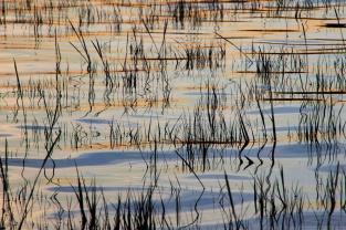 Zwischen Ebbe und Flut