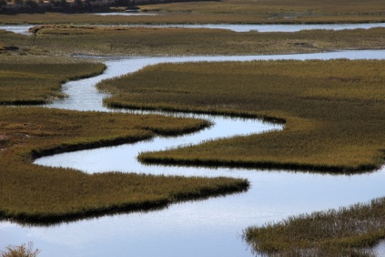 Delta de Milfontes