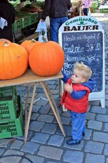 Felix deckt sich für Halloween ein