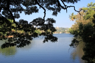 Kandy Lake mit grünem Vorhang