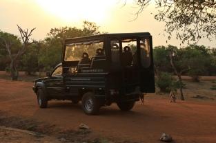 Unser Jeep für die nächsten Stunden