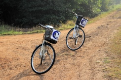 Auch die Bikes erholen sich gut