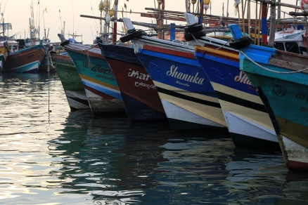 Fangflotte #2