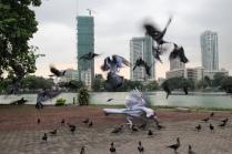 Beira Crazy Crows