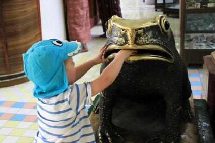 Auch der Frosch freut sich über Spenden