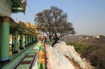 Sagaing Treeview