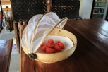 Melonen Pacman beim Frühstück