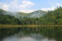 Lago El Palmar