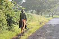 Cowboy auf dem Weg zur Arbeit