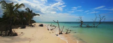 IMG_1913_cayo_jutias_beach_PANO_MINI