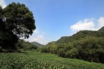 Talwärts gen Jiu Xi