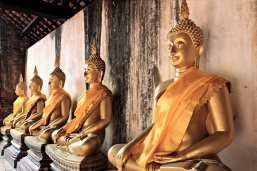 Buddhas soweit das Auge reicht