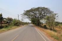 The Road to Ayutthaya