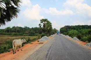 Der lange Weg nach Dawei