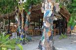Die berühmten Flip Flop Trees