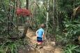 Ab in den Dschungel!