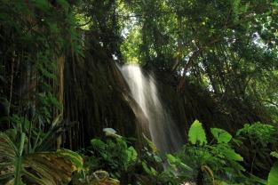 Die schönste Dusche Nord-Thailands (Phu Sang)