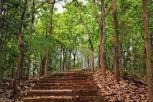 IMG_4746_stairs_MINI