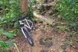 img_7926_bike_mini